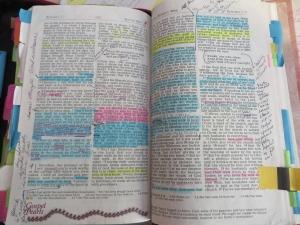 Biblia escudriñad